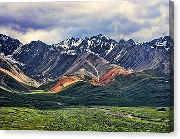 Polychrome Canvas Print by Heather Applegate