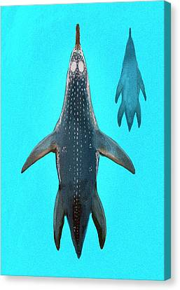 Polycotylus Marine Dinosaur Canvas Print by Nemo Ramjet