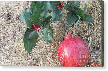 Pomegranate Love Forever Canvas Print by Feile Case
