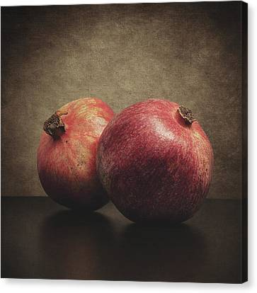 Old Canvas Print - Pomegranate by Taylan Apukovska