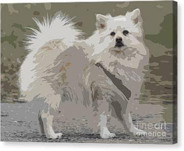 Pomeranian Dog Canvas Print by Jivko Nakev