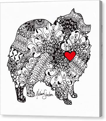 Canvas Print featuring the drawing Pomeranian by Melissa Sherbon