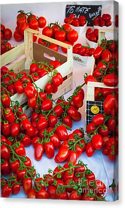 Pomodori Italiani Canvas Print by Inge Johnsson