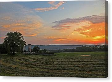 Pompey Hay - June Sunset Canvas Print by John   Kennedy