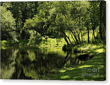 Pond At Glen Oaks Farm Canvas Print by Addie Hocynec
