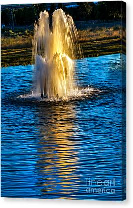 Pond Fountain Canvas Print by Robert Bales