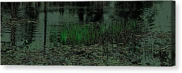 Pond Grasses Panorama Canvas Print