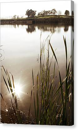 Pond Canvas Print by Les Cunliffe