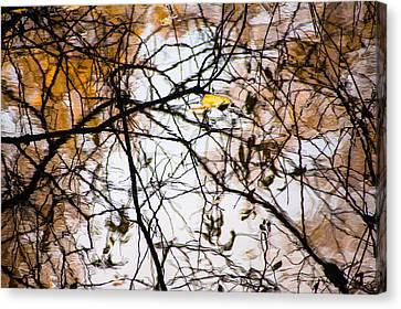 Pond Reflections #7 Canvas Print