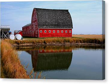Pond Reflections Canvas Print by Larry Trupp