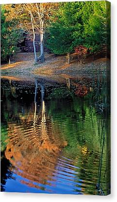 Pond Reflections Canvas Print by William McEvoy