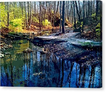 Pond Series 3 Canvas Print by Charlie Spear