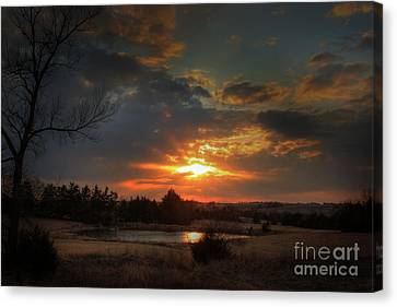 Pond Canvas Print by Thomas Danilovich
