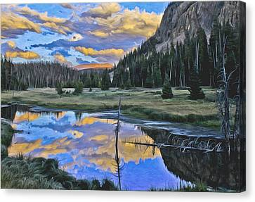 Pondering Reflections Canvas Print by David Kehrli