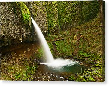 Ponytail Falls At The Columbia River Gorge In Oregon. Canvas Print by Jamie Pham