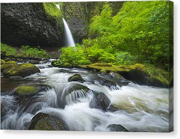 Ponytail Canvas Print - Ponytail Falls by Joseph Rossbach