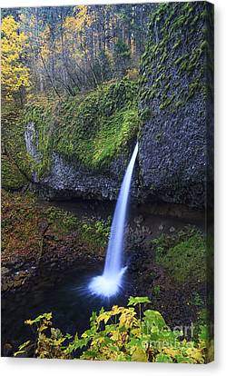 Ponytail Falls Canvas Print by Mark Kiver