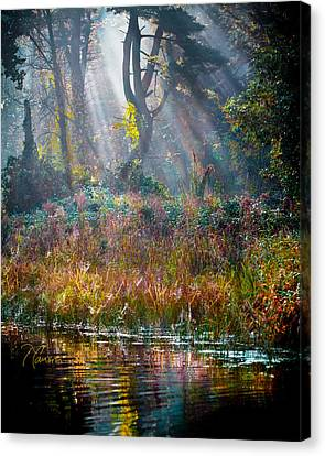 Canvas Print featuring the photograph Pool Of Optimism by Tom Cameron