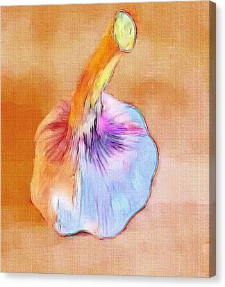 Poor Galic Canvas Print by Yury Malkov