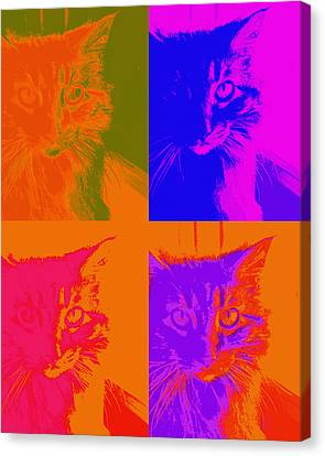 Pop Art Cat  Canvas Print by Ann Powell