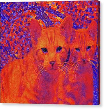 Pop Art Cats Canvas Print by Jane Schnetlage
