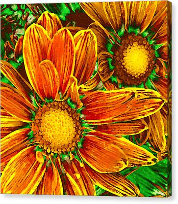 Pop Art Daisies 8 Canvas Print by Amy Vangsgard