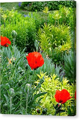Pop Goes The Garden Canvas Print