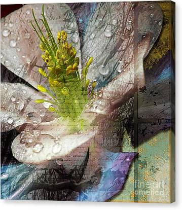 Pop IIi Canvas Print by Yanni Theodorou