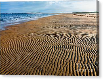 Popham Beach Canvas Print by Susan Cole Kelly