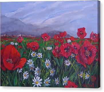 Poppies And Daisies Canvas Print by Nina Mitkova