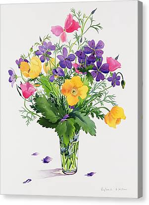 Poppies And Geraniums Canvas Print by Christopher Ryland