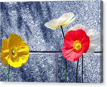Canvas Print featuring the digital art Poppies And Granite by Will Borden