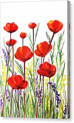 Poppies And Lavender  Canvas Print