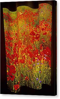 Poppies And Wildflowers Canvas Print