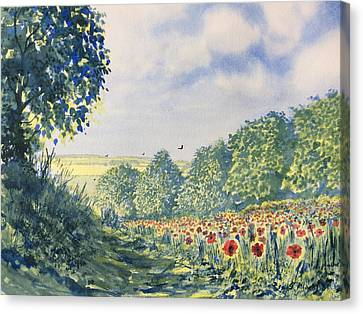 Poppies A'plenty Canvas Print