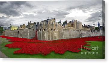 Poppies At The Tower Of London Canvas Print by J Biggadike