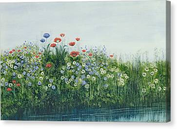 Poppies By A Stream Canvas Print by Andrew Nicholl