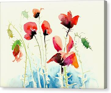 Poppies Field Poppy Watercolor Canvas Print by Tiberiu Soos