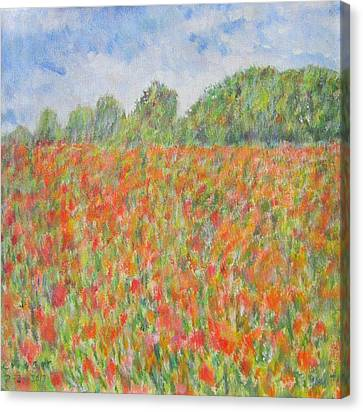 Poppies In A Field In Afghanistan Canvas Print