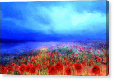 Poppies In The Mist Canvas Print by Valerie Anne Kelly