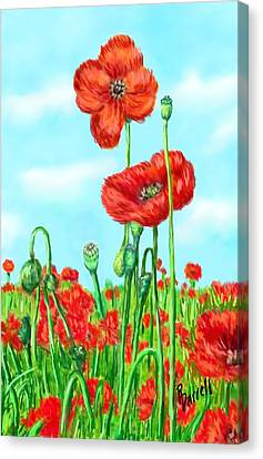 Poppies N' Pods Canvas Print by Ric Darrell