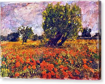 Poppies Of Puglia Canvas Print by Steven Boone
