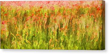 Poppies Of Tuscany IIi Canvas Print by David Letts