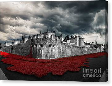 Poppies Tower Of London Canvas Print by J Biggadike