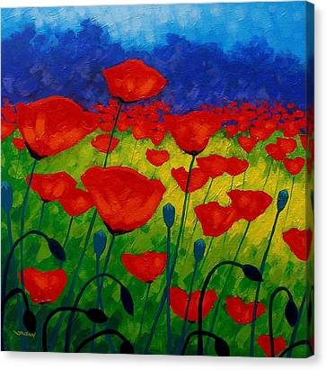 Metal Canvas Print - Poppy Corner II by John  Nolan