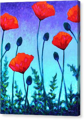 Poppy Corner Canvas Print by John  Nolan