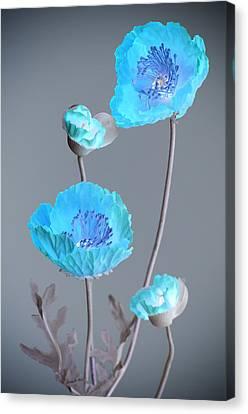 Poppy Family Canvas Print
