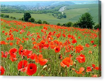 Poppy Field Canvas Print by John Topman