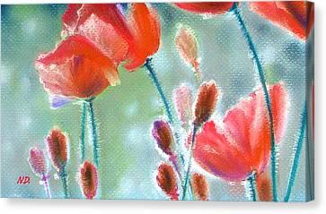 Poppy Field Canvas Print by Natasha Denger