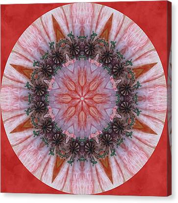 Poppy In My Garden In A Circle Canvas Print by Trina Stephenson